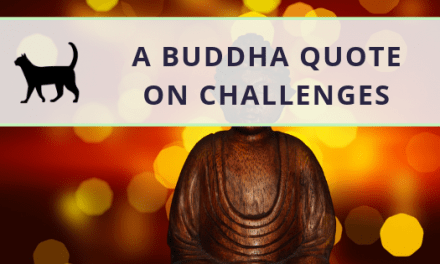 My perspective on a valuable Buddha quote on challenges
