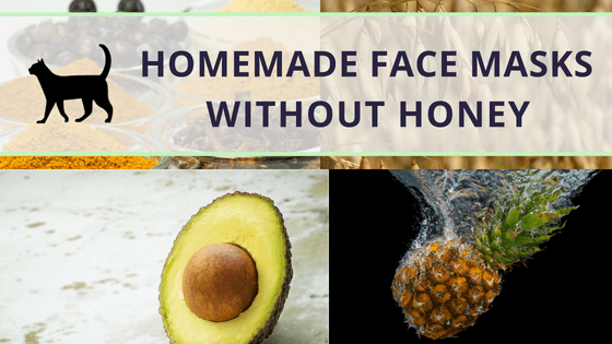 How To Make A Diy Face Mask Without Honey