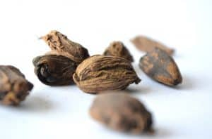 Nutmeg waiting to show it's benefits for your skin