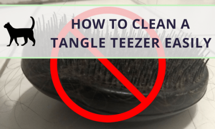 How to get a clean Tangle Teezer easily