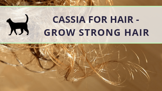 Cassia for hair – how to help your hair be strong!