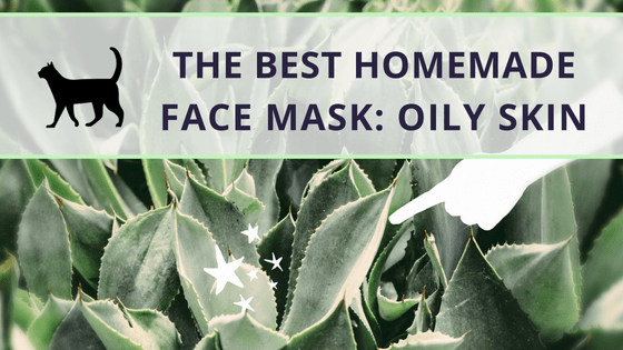 Try the Best Homemade Face Mask For Oily Skin, it's so easy!