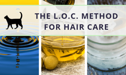 LOC method: Everything you need to know!