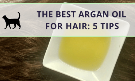 What is the best argan oil for hair? 5 tips!