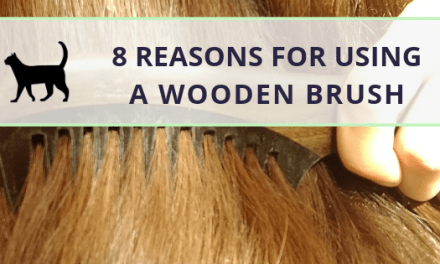 Reasons for using a wooden hairbrush or comb