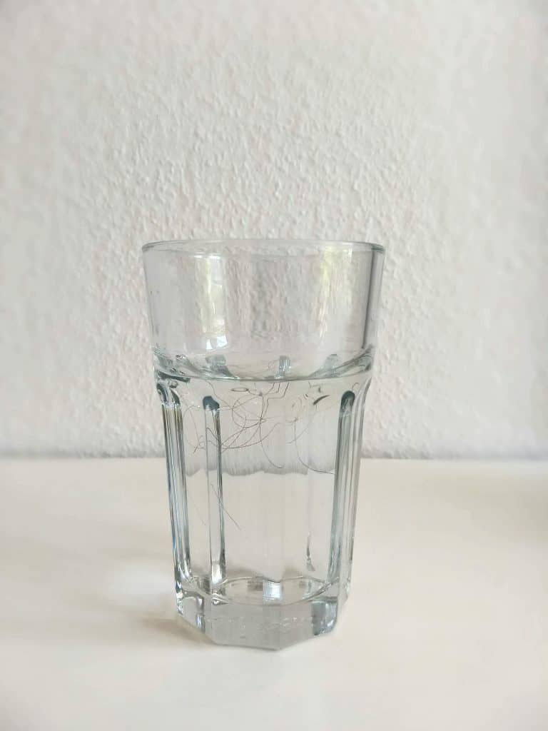 Image of a glass of water with a long, dark hair in it to do the hair porosity water test