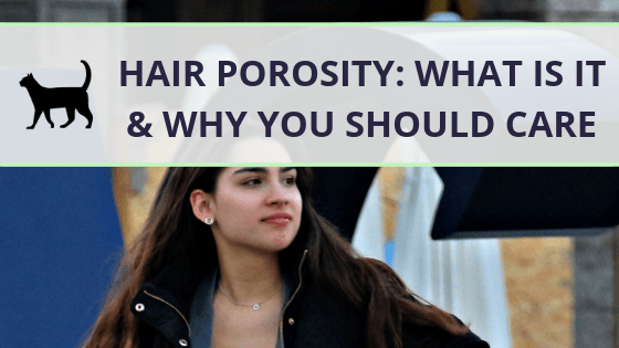 What is hair porosity and why should you care?
