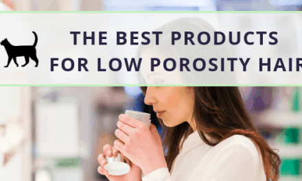 The best low porosity hair products