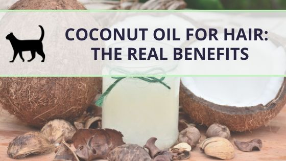Coconut oil for hair: the real benefits