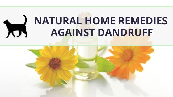 9 natural dandruff home remedies, backed by science
