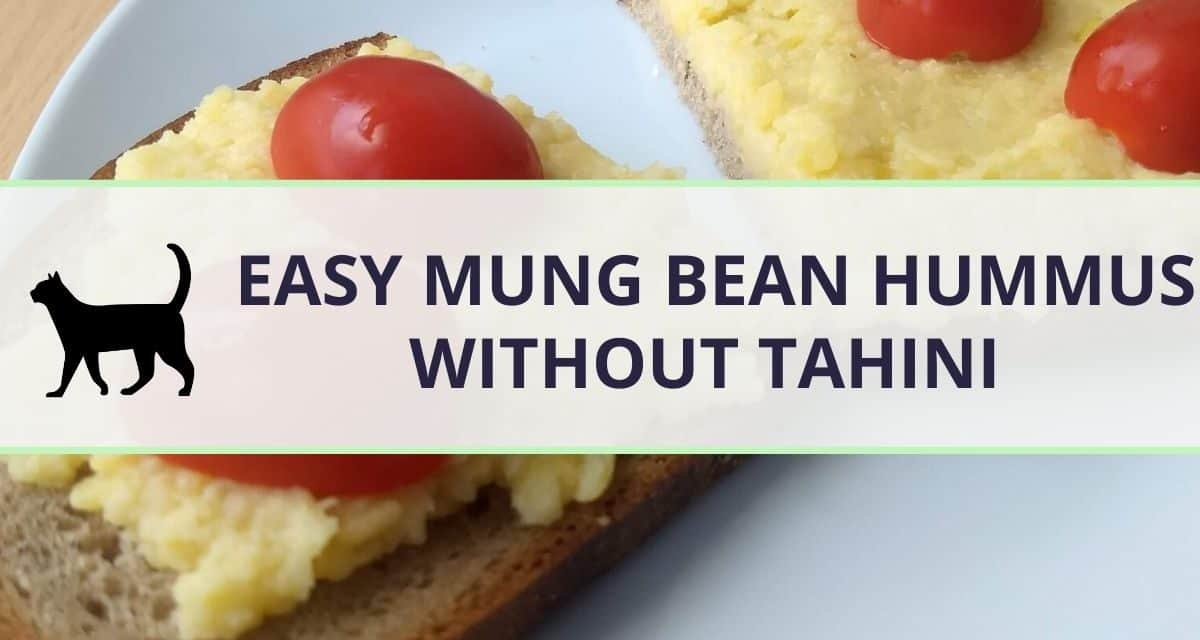 Quick & easy recipe: Mung bean hummus (no tahini)