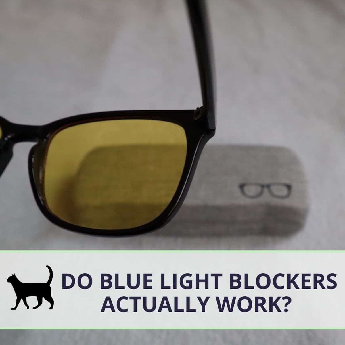 Do Blue light blockers work? Here are my test results!