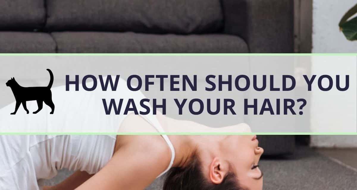 How often should you wash your hair? {FLOWCHART}