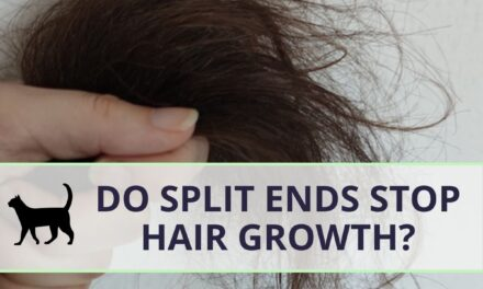 Do split ends stop hair growth? Or cause hair loss?